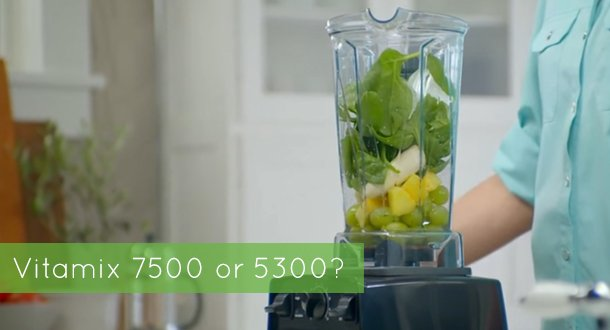 vitamix 7500 vs 5300
